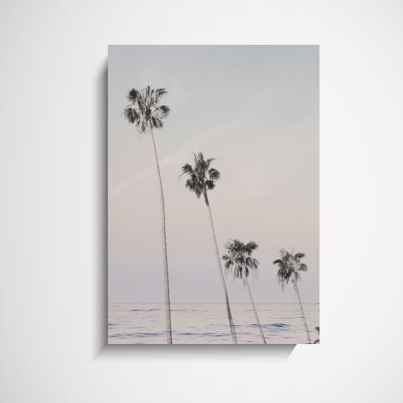 Palm Beach Sunset Palm Tree wall art print Wall Art Print - Yorkelee Prints Australia