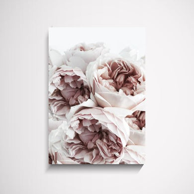 The Perfect Match flower wall art print Wall Art Print - Yorkelee Prints Australia