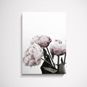 The Stables Peonies flower wall art print Wall Art Print - Yorkelee Prints Australia