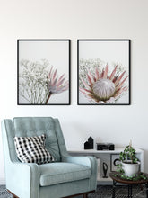 Thea - Protea and Baby Breath flower wall art print Wall Art Print - Yorkelee Prints Australia