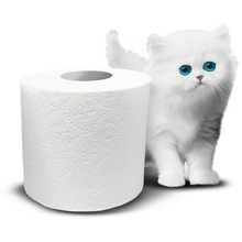 Royale 3 Ply Strong Bath Tissue Toilet Paper 8 Double Rolls - Larry The Liquidator