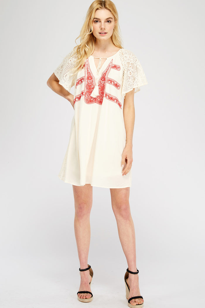 entro lace & embroidered mini dress