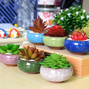 Ningus Ceramic Planter