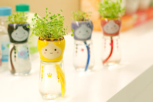 Mini DIY Magic Grass Head Babushka Planters - stilyo