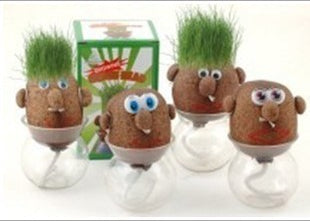 Lovely Design Mini DIY Magic Grass Head Plant
