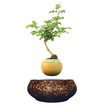 Supernova Base Levitating Air-Floating Bonsai Pot