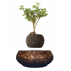 Supernova Base Levitating Air-Floating Bonsai Pot - stilyo