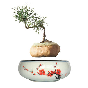 Red Flowers Ceramic Base Levitating Air-Floating Bonsai Pot - stilyo