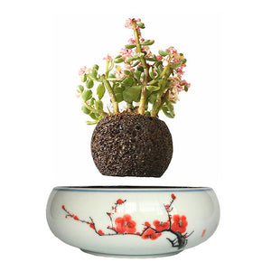 Red Flowers Ceramic Base Levitating Air-Floating Bonsai Pot