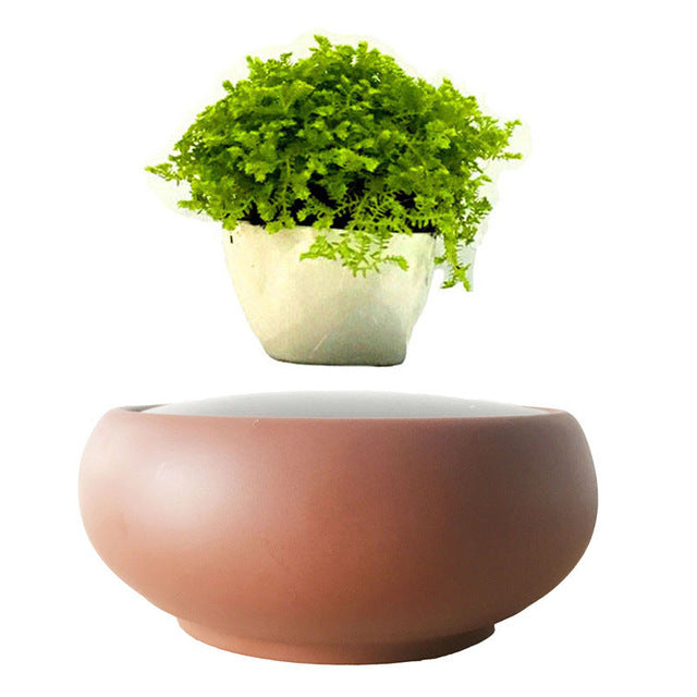 Desert Sand Base Levitating Air-Floating Bonsai Pot - stilyo