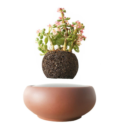 Desert Sand Base Levitating Air-Floating Bonsai Pot
