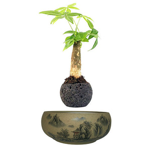 Japanese Village Base Levitating Air-Floating Bonsai Pot