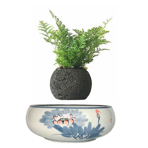 Blue Flowers Ceramic Base Levitating Air-Floating Bonsai Pot