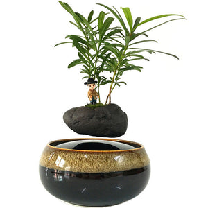 Black Eye Base Levitating Air-Floating Bonsai Pot - stilyo