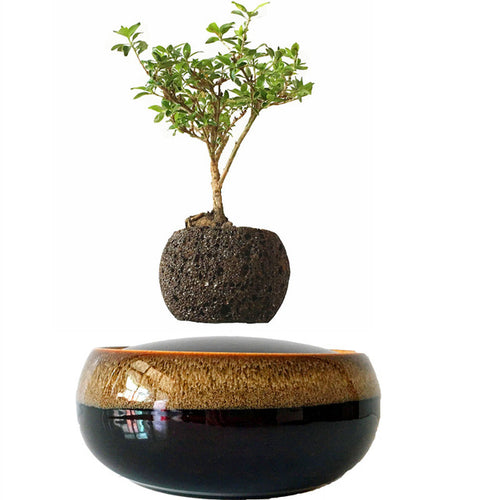 Black Eye Base Levitating Air-Floating Bonsai Pot