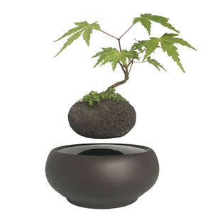 Blackout Base Levitating Air-Floating Bonsai Pot