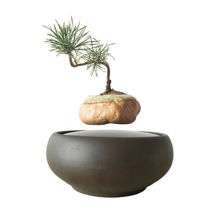 Blackout Base Levitating Air-Floating Bonsai Pot - stilyo