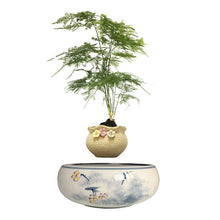 Yellow Flowers Ceramic Base Levitating Air-Floating Bonsai Pot - stilyo