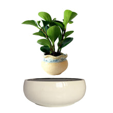 White Ceramic Base Levitating Air-Floating Bonsai Pot - stilyo