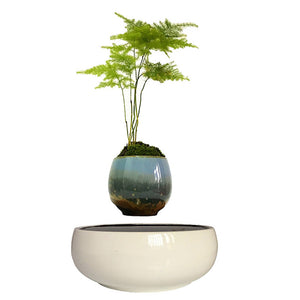 White Ceramic Base Levitating Air-Floating Bonsai Pot
