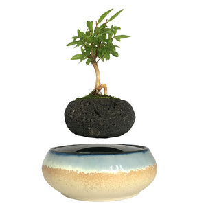 Seaside Base Levitating Air-Floating Bonsai Pot - stilyo