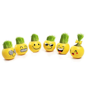 Creative DIY Emoji Grass Head