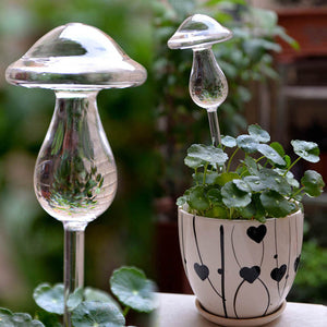 Mushroom Clear Glass Water Feeder