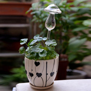 Mushroom Clear Glass Water Feeder - stilyo