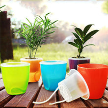 Self Watering Planters - stilyo