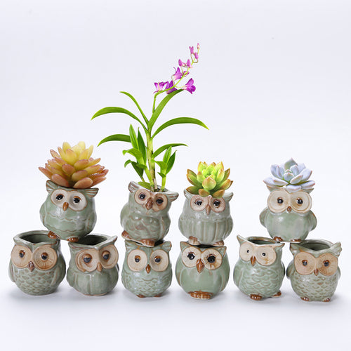 Mini Ceramic Owl Plant Pot (Random Design)
