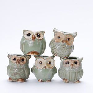 Mini Ceramic Owl Plant Pot (Random Design) - stilyo