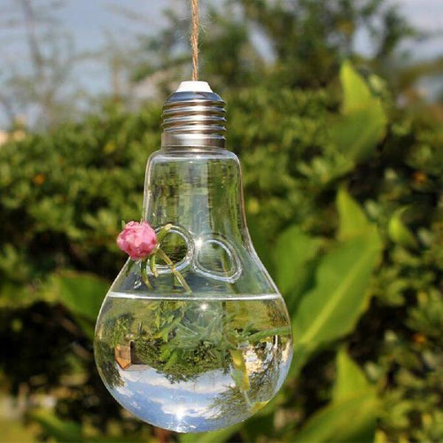 Light Bulb Shaped Hydroponic Plant Container