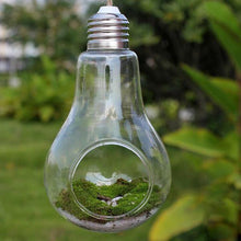 Light Bulb Shaped Hydroponic Plant Container - stilyo