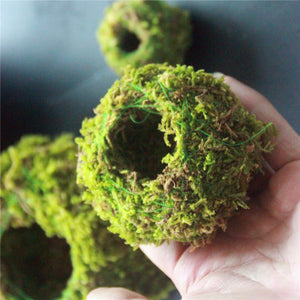 6/9/12CM Green Moss Ball Flower Pot - stilyo