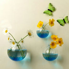 Wall Hanged Transparent Round Pot / Aquarium - stilyo