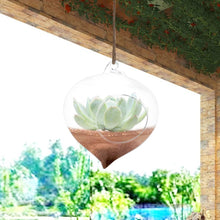 Wall Hanging Glass Plant Pot