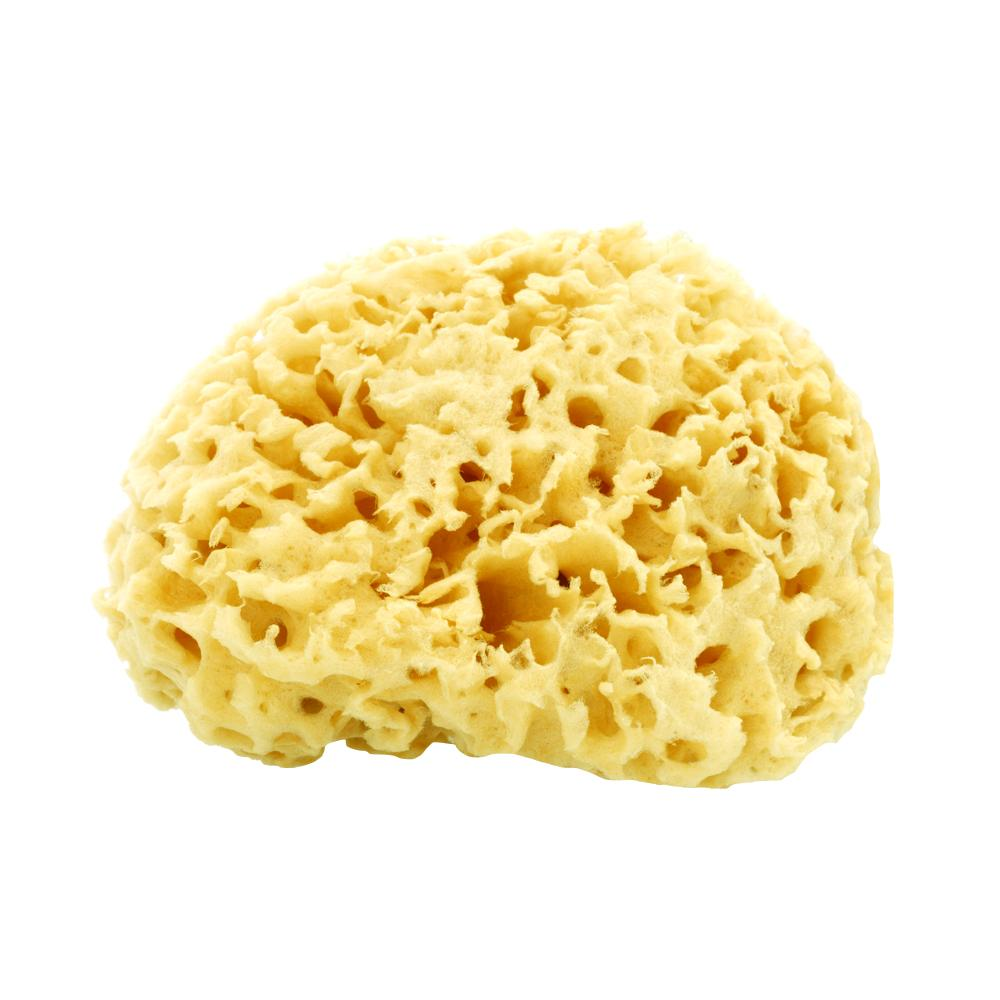 Natural Sea Sponge - Afterspa -  Spa experience at home