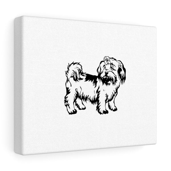 Shih Tzu Canvas Gallery Wraps