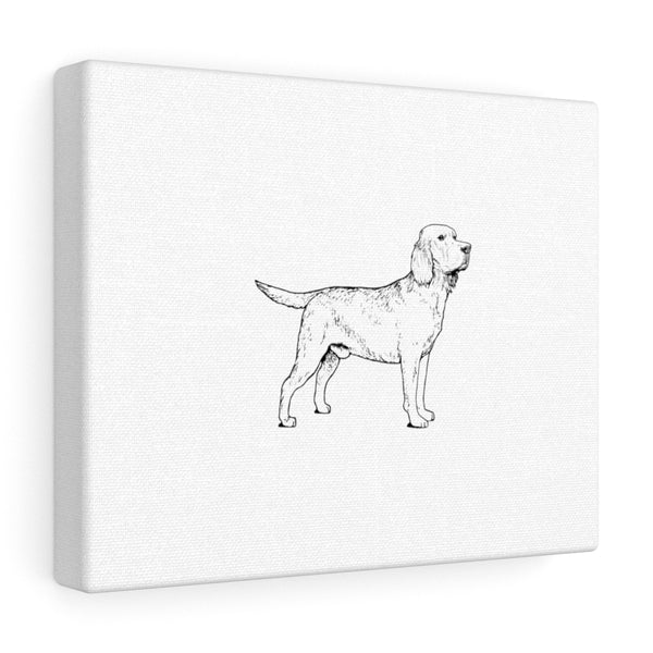 Labrador Retriever Canvas Gallery Wraps
