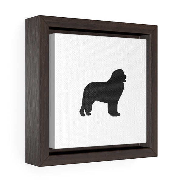 Newfoundland Square Framed Premium Gallery Wrap Canvas