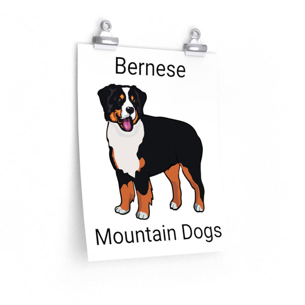 Bernese Mountain Dog Premium Matte vertical posters