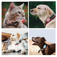 Pet GPS Tracker, Smart Waterproof IP67 MiNi Pet GPS AGPS LBS Tracking Tracker Collar For Dog Cat AGPS LBS SMS Positioning Geo-Fence Track Device