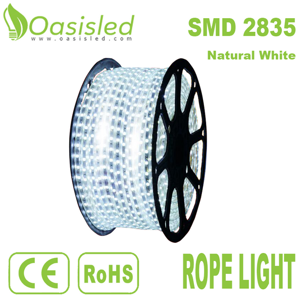 Waterproof IP68 Flexible 2835 SMD LED Strip Light White RLBC2835-156-N