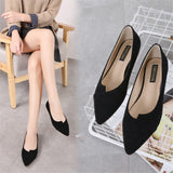Women's Ballet  Suede Shoes