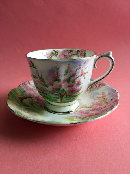 "Royal Albert Bone China England ""Blossom Time"" Cup and Saucer 1950s"