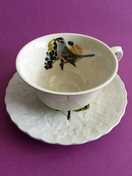 Alfred Meakin ~ Audubon Birds of America ~ Cup and Saucer