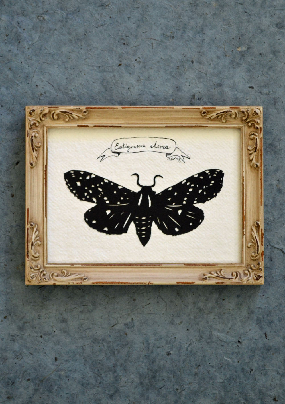 SALT MARSH MOTH Papercut - Hand-Cut Silhouette, Framed