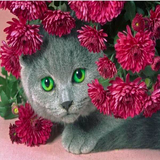 Hiding Cat 5D Diamond Painting Kit