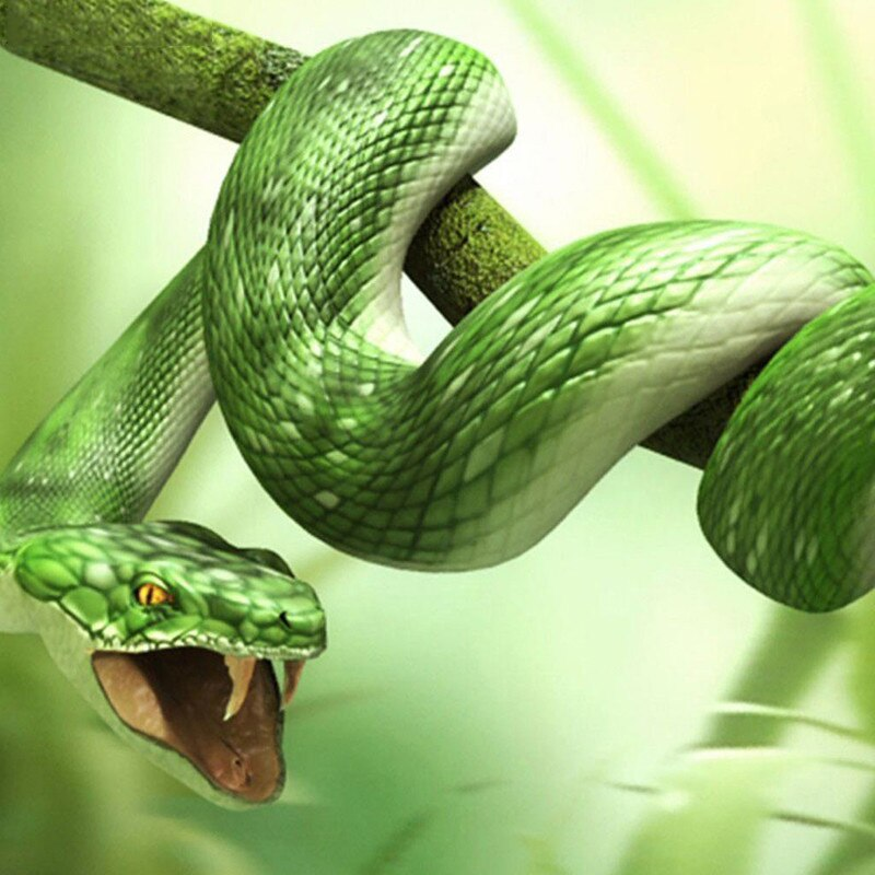 Green Snake 5D Diamond Painting Kit