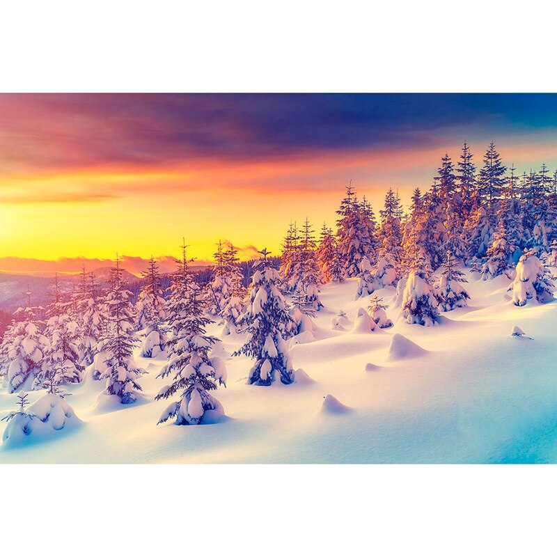 Wilderness Winter Sunset 5D Diamond Painting Kit